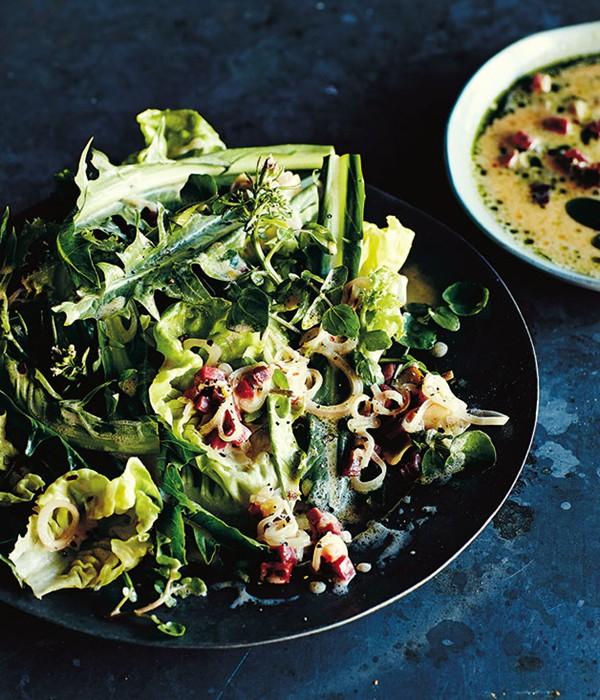 butter lettuce and dandelion salad