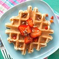 Classic sourdough waffles or pancakes