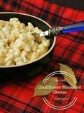 Creamy cauliflower macaroni cheese