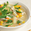 Dairy-free chicken and vegetable soup