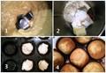 Easy nigella cupcakes