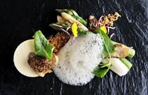 Goat's cheese custard and asparagus
