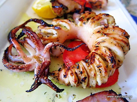 Grilled Calamari Japanese Grilled calamari and cumin
