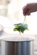 How to blanch herbs for syrups