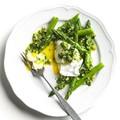 Lemony spinach pesto