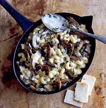 Mushroom, tarragon & Taleggio