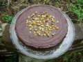 Nigella's chocolate pistachio cake
