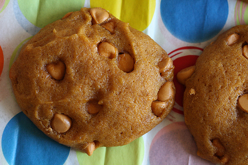 Super soft pumpkin chocolate chip cookies